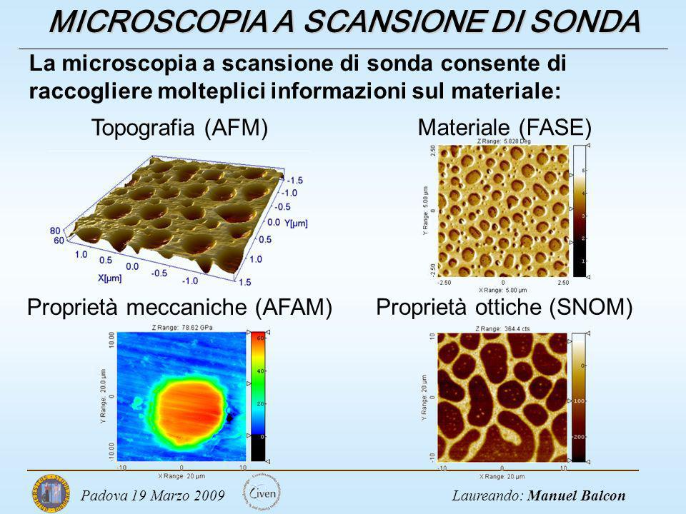 MICROSCOPIA A SCANSIONE DI SONDA