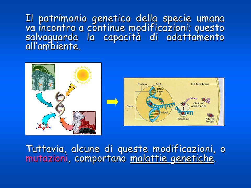 Il patrimonio genetico della specie umana va incontro a continue modificazioni; questo salvaguarda la capacità di adattamento all'ambiente.