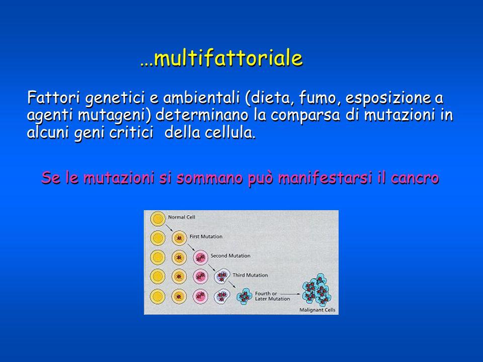 …multifattoriale