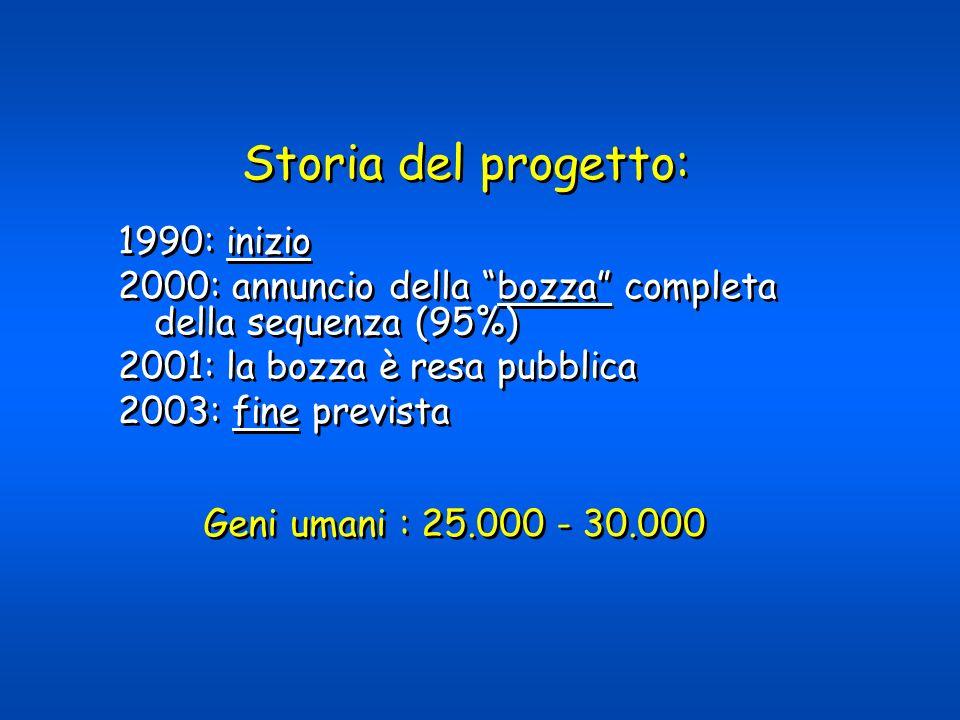 Storia del progetto: 1990: inizio