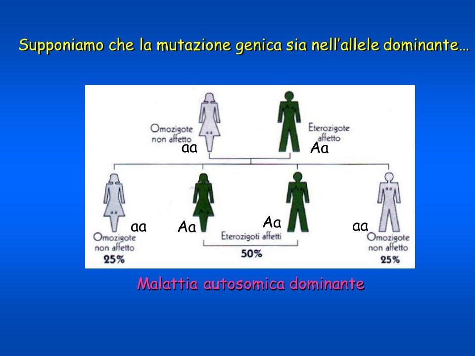 Supponiamo che la mutazione genica sia nell'allele dominante…
