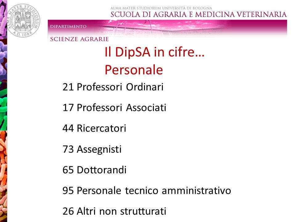 Il DipSA in cifre… Personale 21 Professori Ordinari