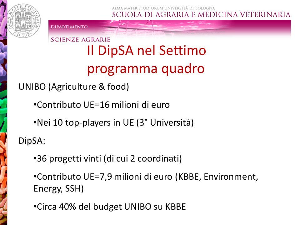 Il DipSA nel Settimo programma quadro