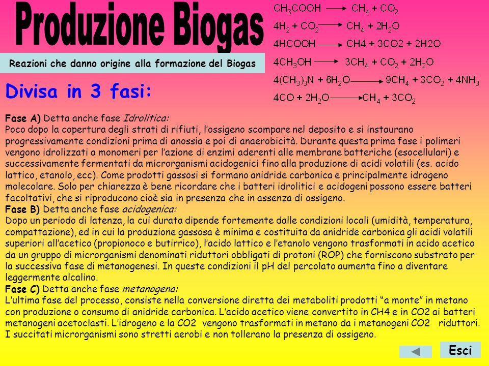 Reazioni che danno origine alla formazione del Biogas