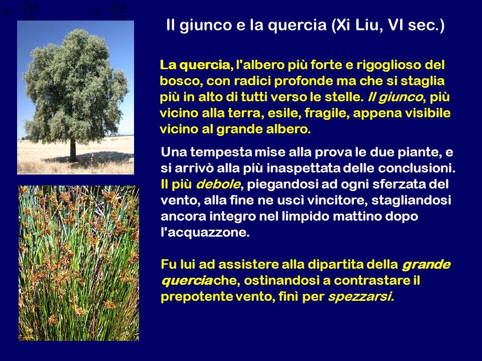 Il giunco e la quercia (Xi Liu, VI sec.)