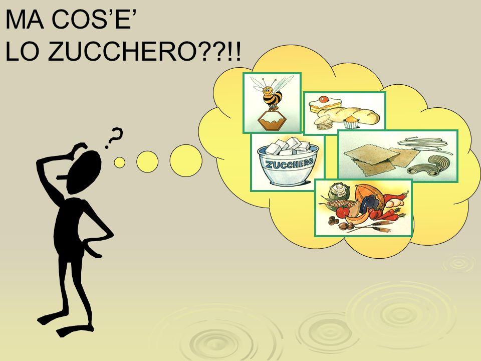 MA COS'E' LO ZUCCHERO !!