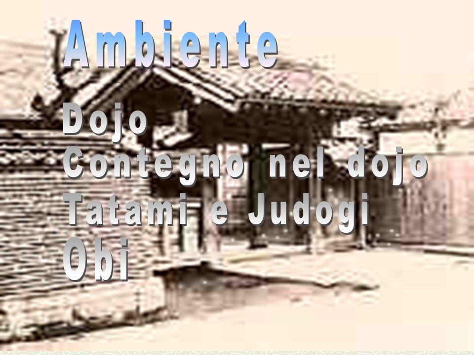 Ambiente Dojo Contegno nel dojo Tatami e Judogi Obi