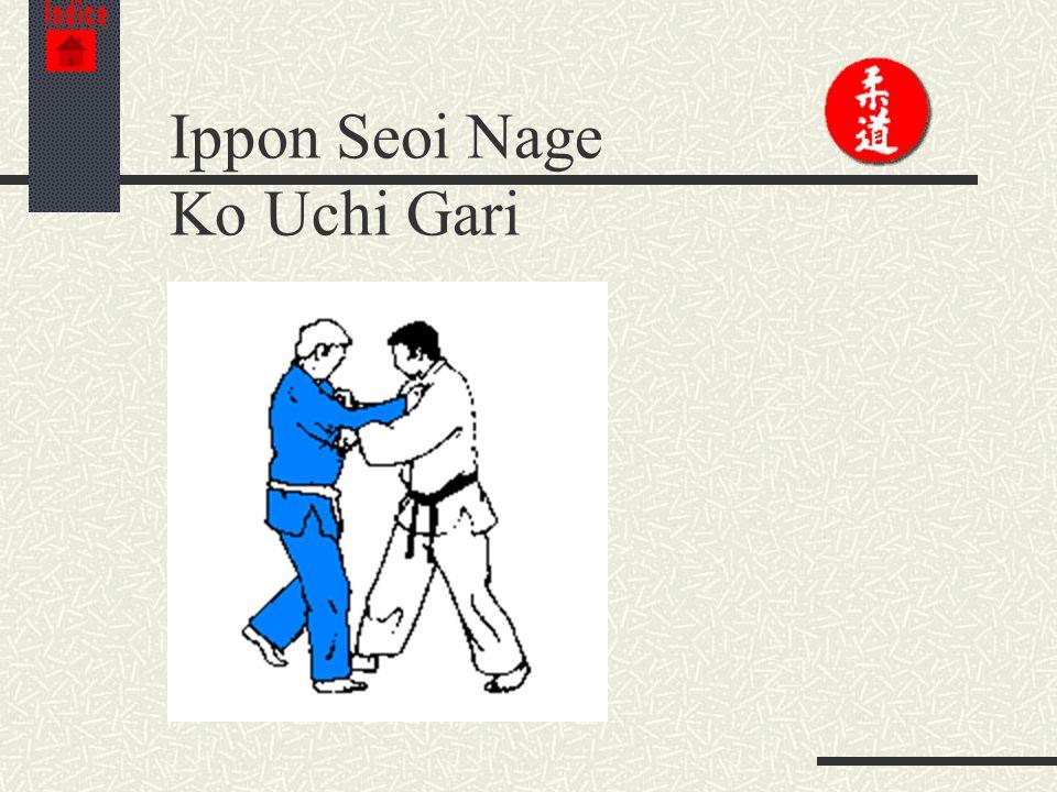 Ippon Seoi Nage Ko Uchi Gari