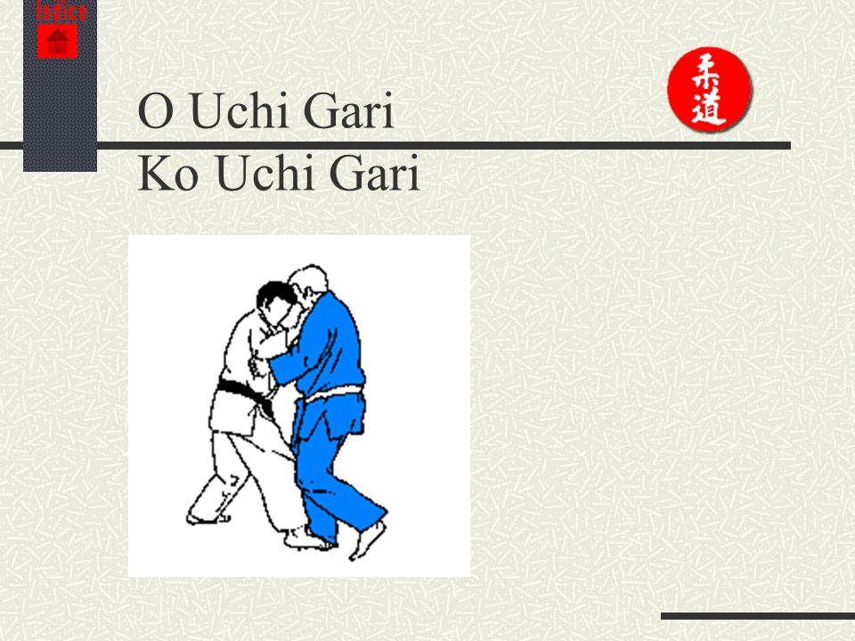 Indice O Uchi Gari Ko Uchi Gari