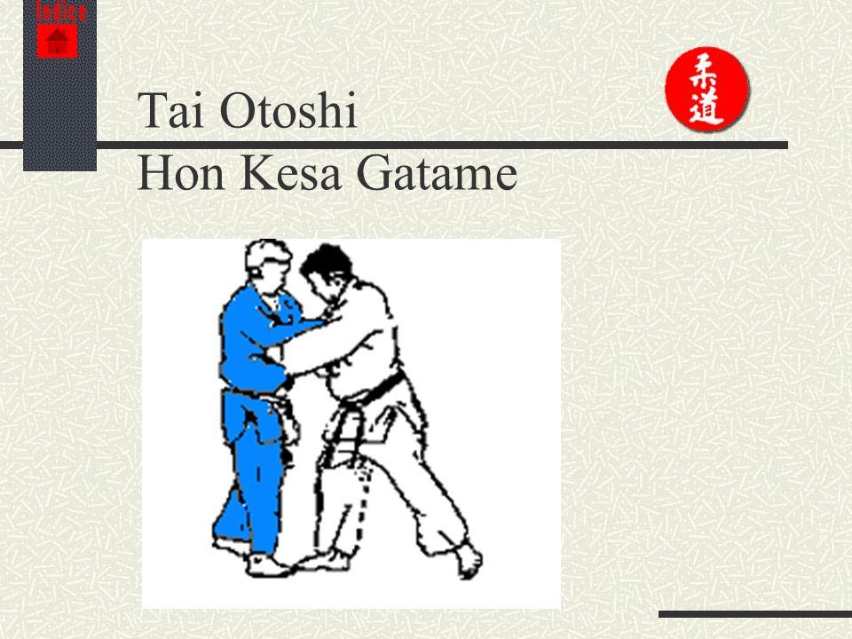 Tai Otoshi Hon Kesa Gatame