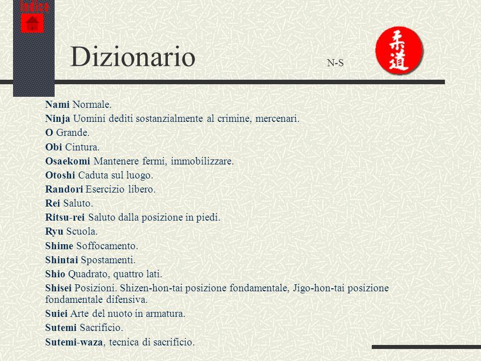 Dizionario N-S Nami Normale.