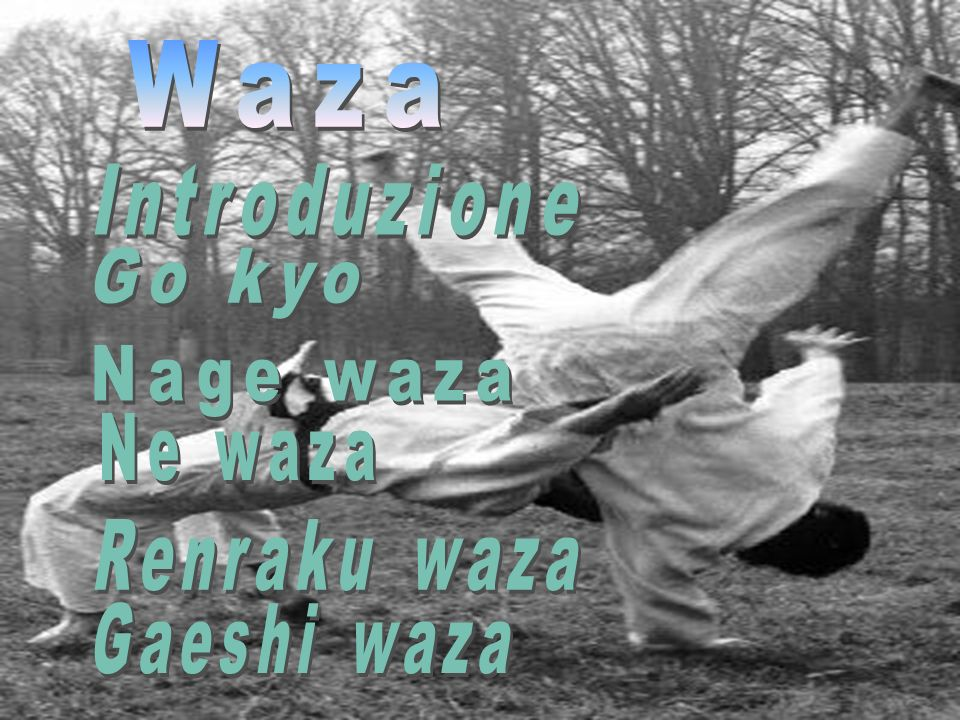 Waza Introduzione Go kyo Nage waza Ne waza Renraku waza Gaeshi waza