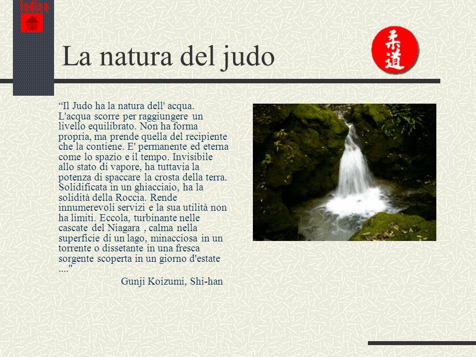 IndiceLa natura del judo.