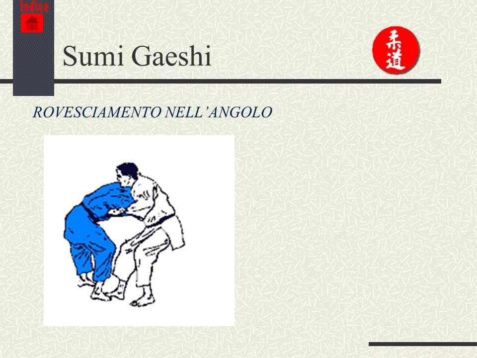 Indice Sumi Gaeshi ROVESCIAMENTO NELL'ANGOLO