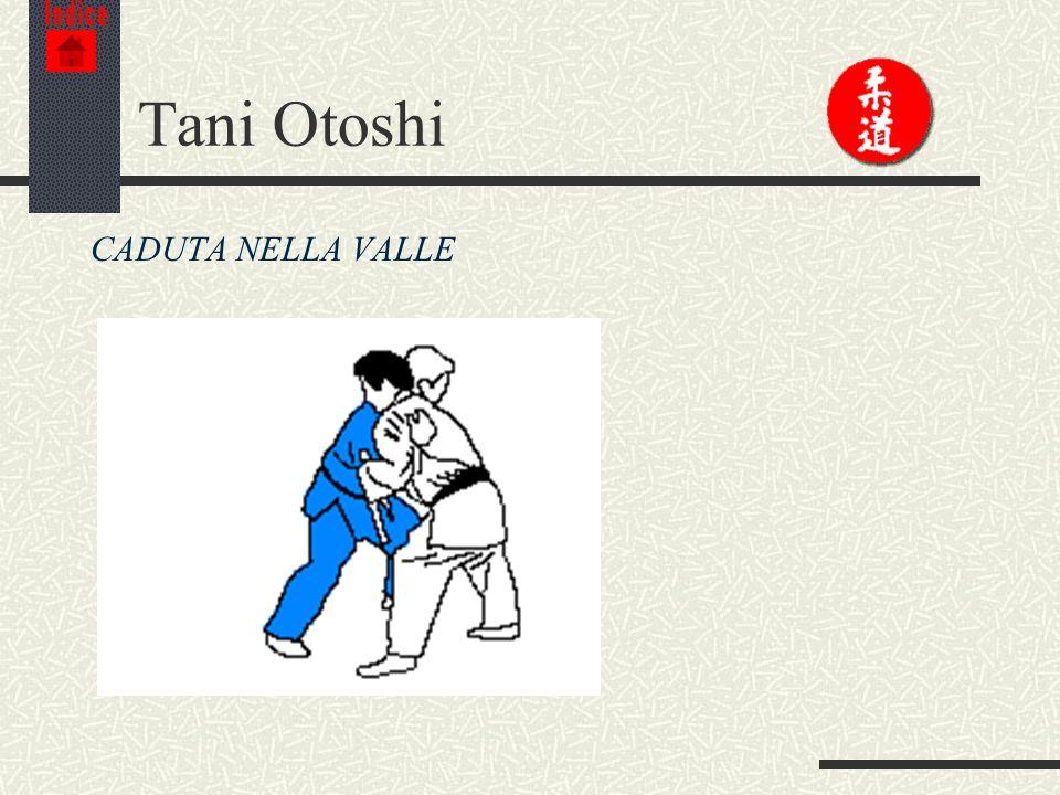 Indice Tani Otoshi CADUTA NELLA VALLE