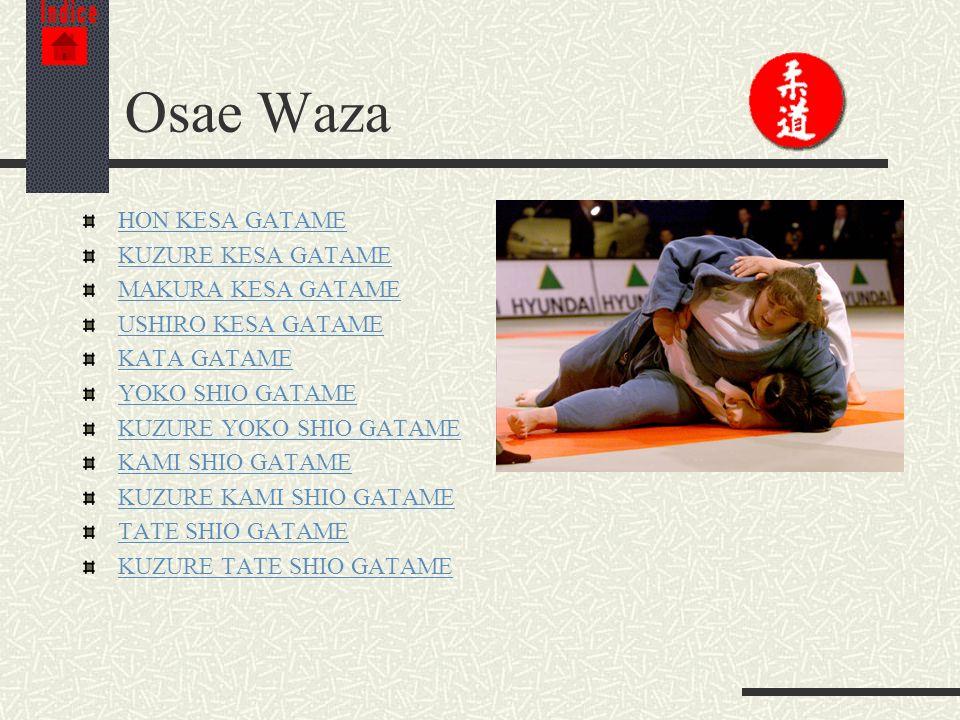 Osae Waza HON KESA GATAME KUZURE KESA GATAME MAKURA KESA GATAME