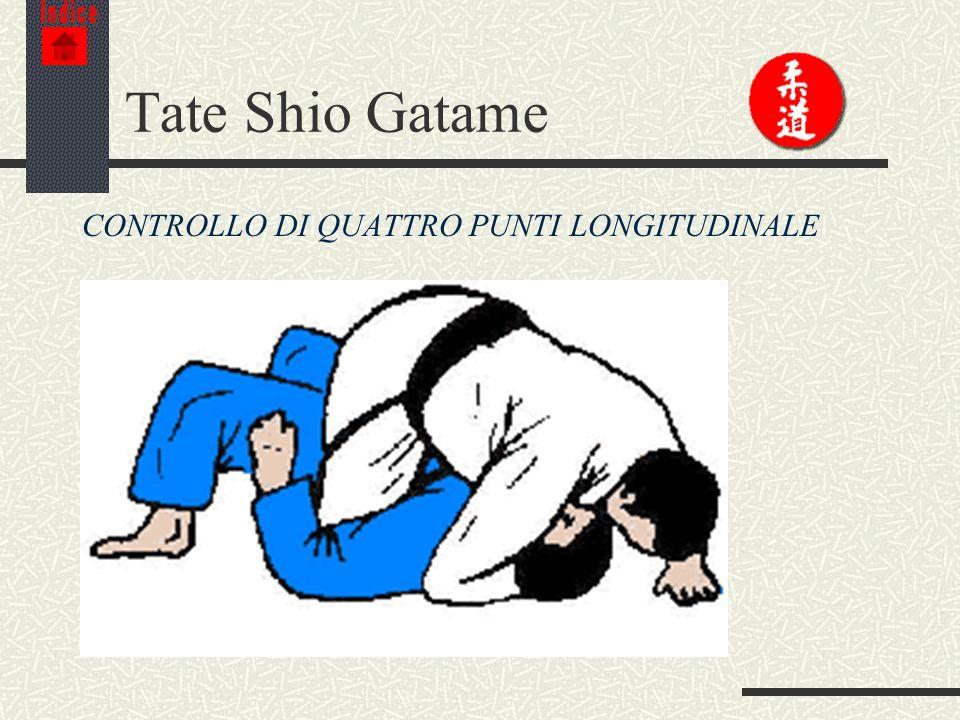 Indice Tate Shio Gatame CONTROLLO DI QUATTRO PUNTI LONGITUDINALE