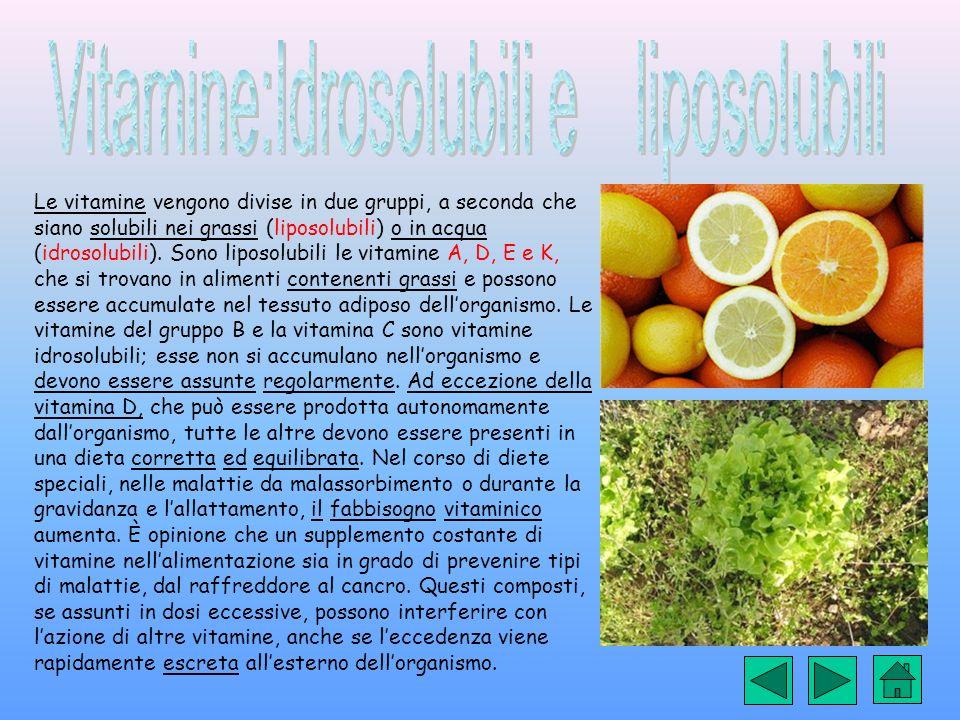 Vitamine:Idrosolubili e liposolubili