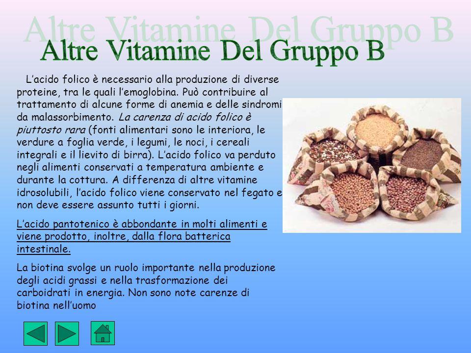 Altre Vitamine Del Gruppo B