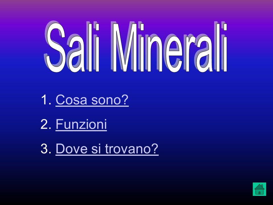 Sali Minerali Cosa sono Funzioni Dove si trovano