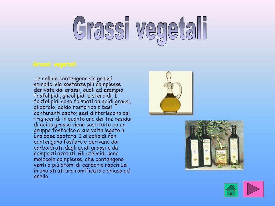Grassi vegetali Grassi vegetali