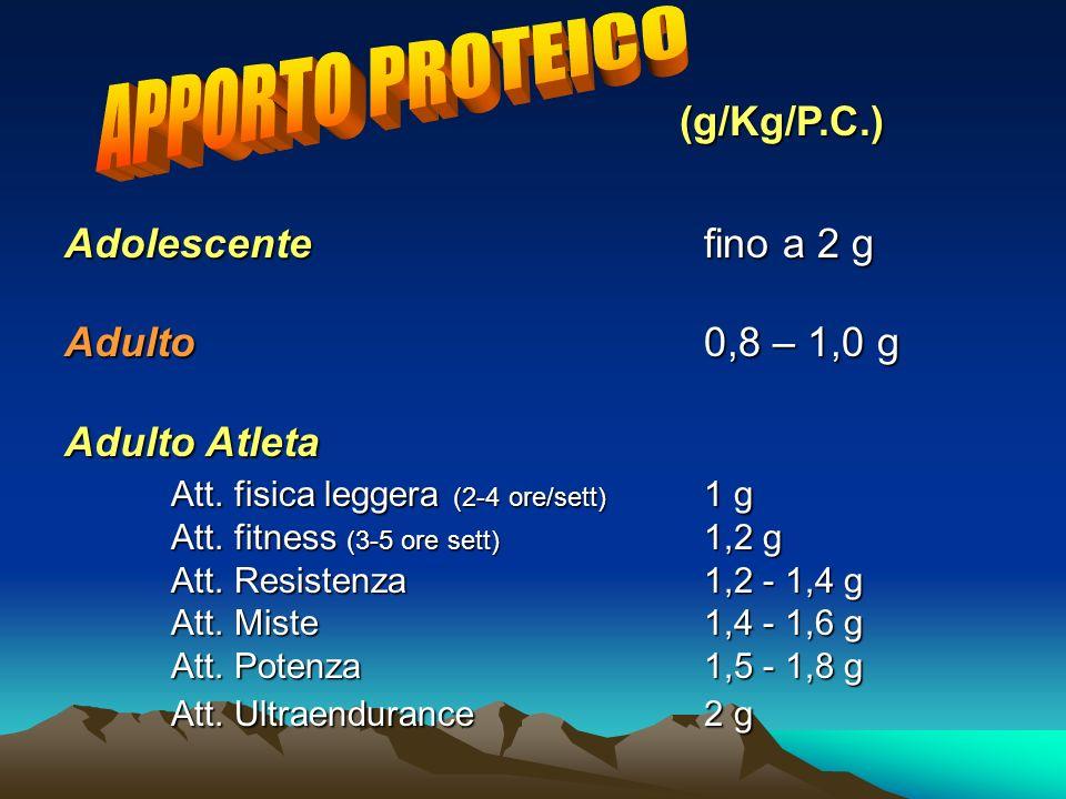 APPORTO PROTEICO (g/Kg/P.C.) Adolescente fino a 2 g Adulto 0,8 – 1,0 g