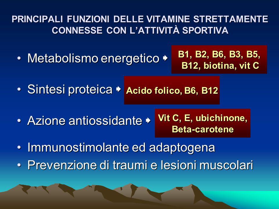 Metabolismo energetico  Sintesi proteica  Azione antiossidante 