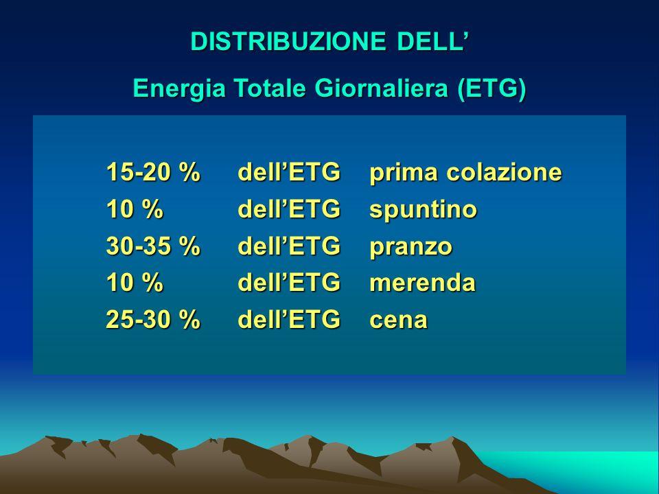Energia Totale Giornaliera (ETG)