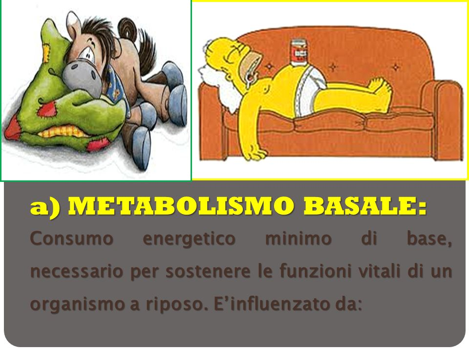 a) METABOLISMO BASALE: