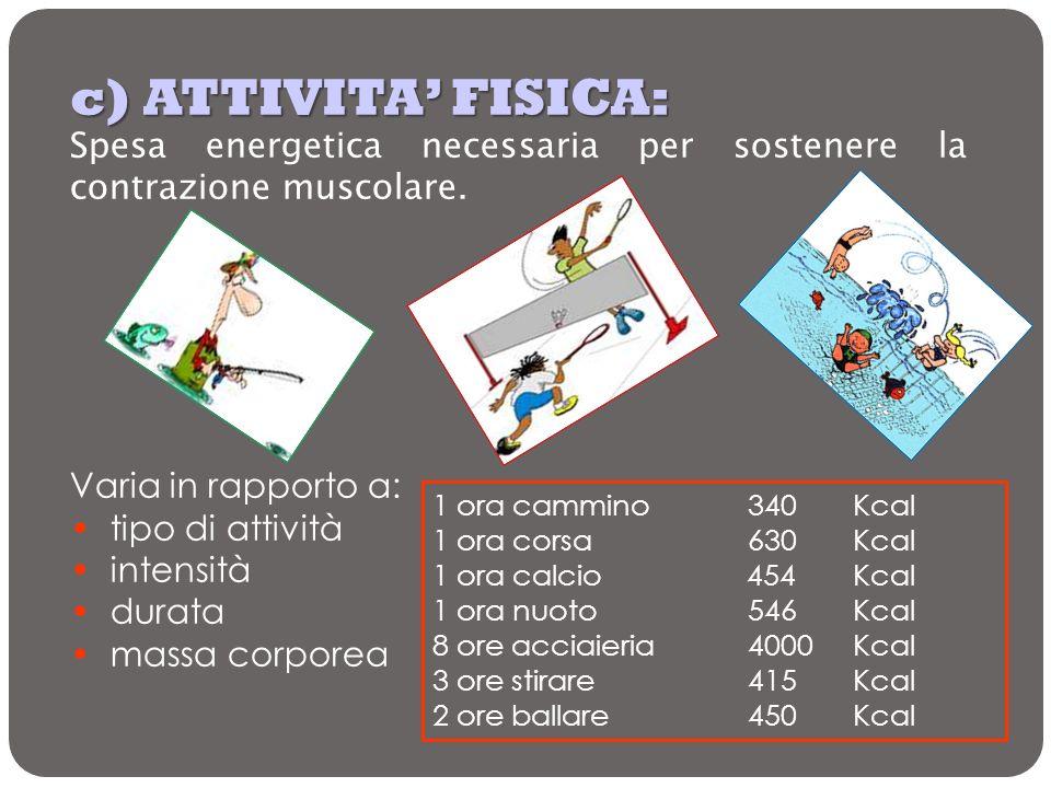 c) ATTIVITA' FISICA:Spesa energetica necessaria per sostenere la contrazione muscolare. Varia in rapporto a: