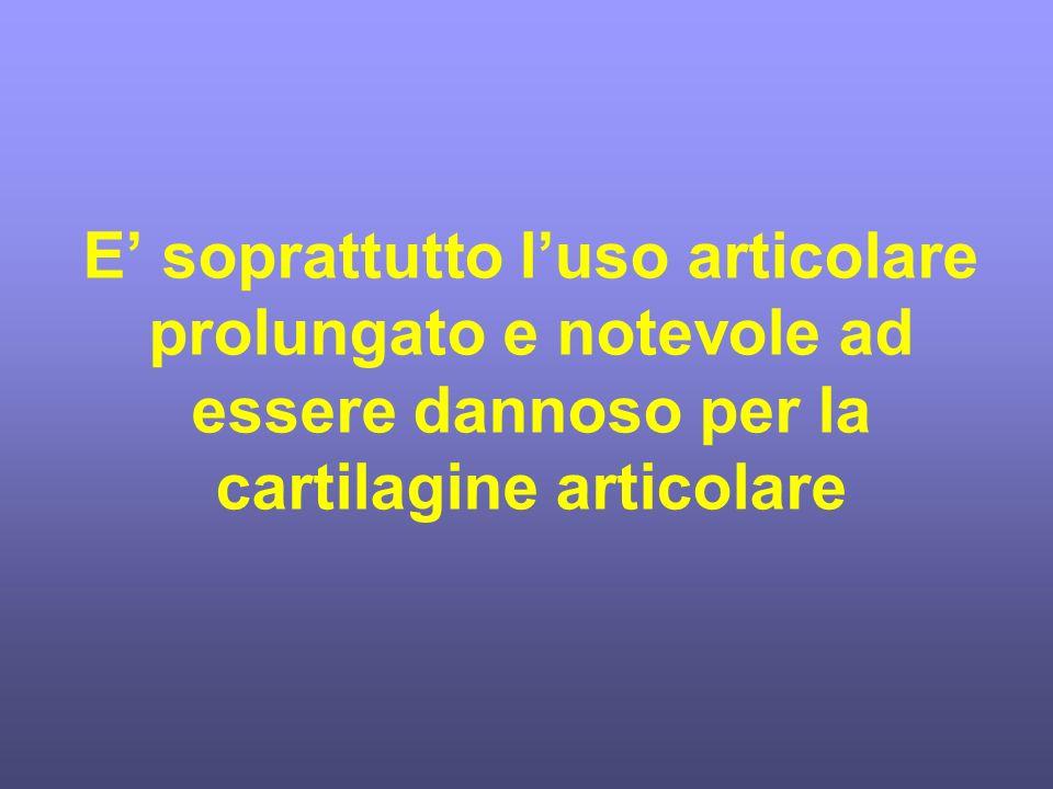 E' soprattutto l'uso articolare prolungato e notevole ad essere dannoso per la cartilagine articolare