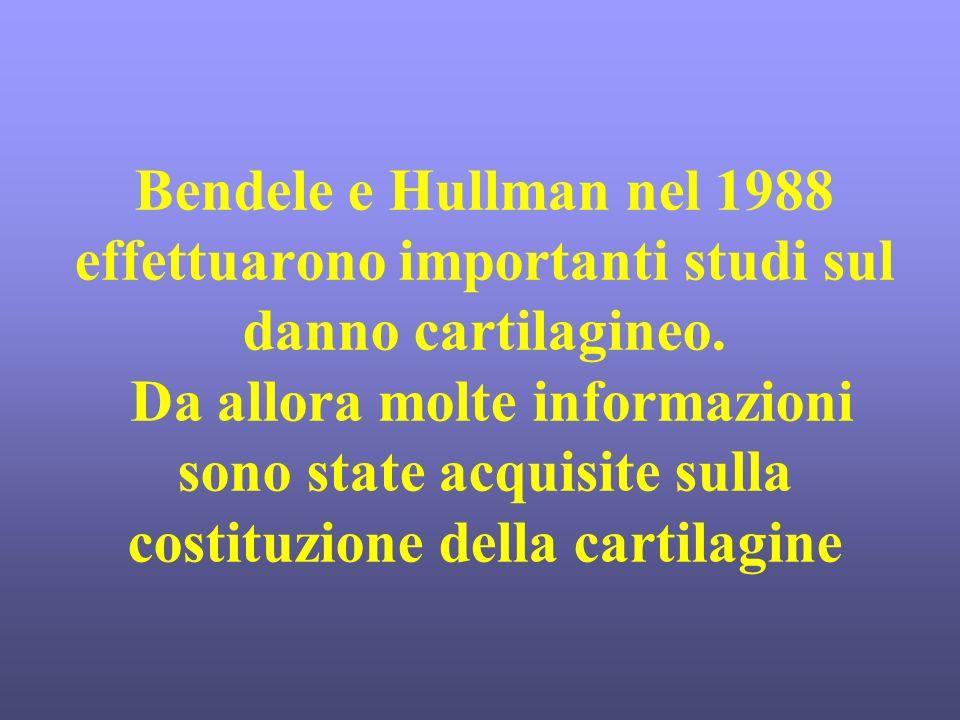 Bendele e Hullman nel 1988 effettuarono importanti studi sul danno cartilagineo. Da allora molte informazioni sono state acquisite sulla costituzione della cartilagine