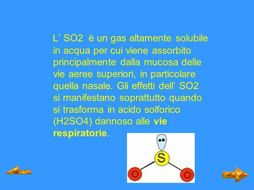 L' SO2 è un gas altamente solubile in acqua per cui viene assorbito principalmente dalla mucosa delle vie aeree superiori, in particolare quella nasale.