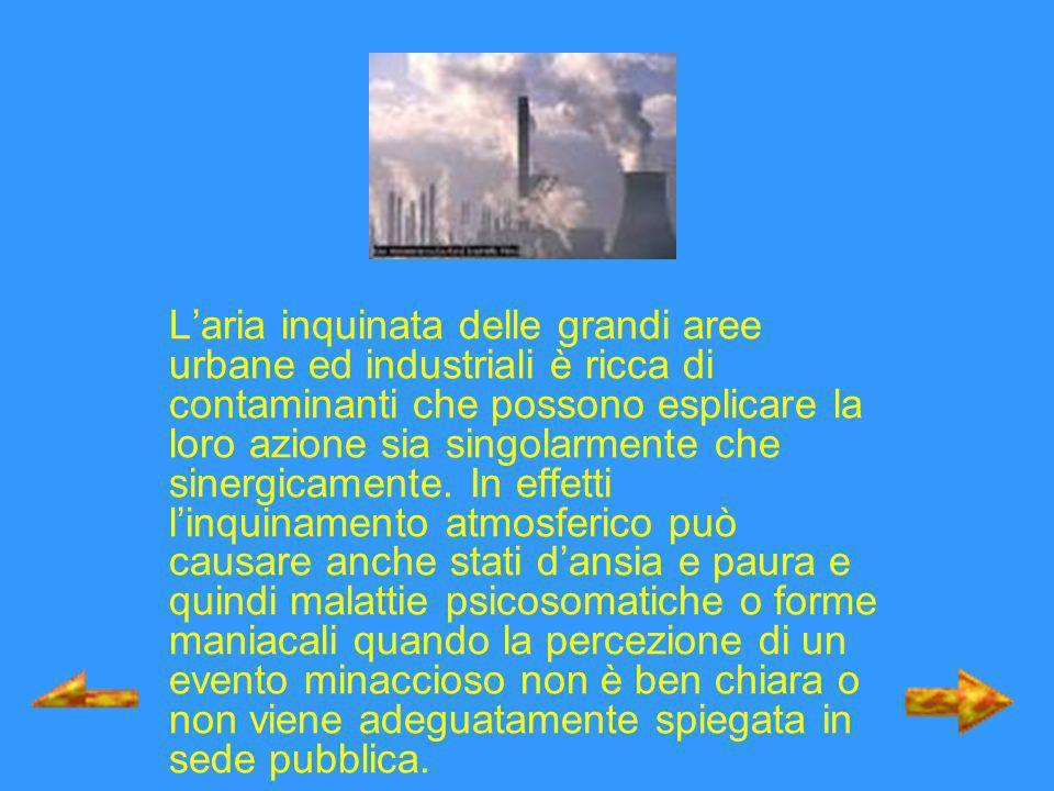 L'aria inquinata delle grandi aree urbane ed industriali è ricca di contaminanti che possono esplicare la loro azione sia singolarmente che sinergicamente.