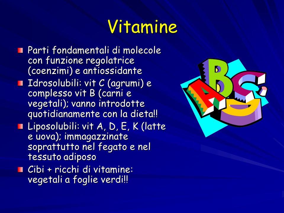 Vitamine Parti fondamentali di molecole con funzione regolatrice (coenzimi) e antiossidante.