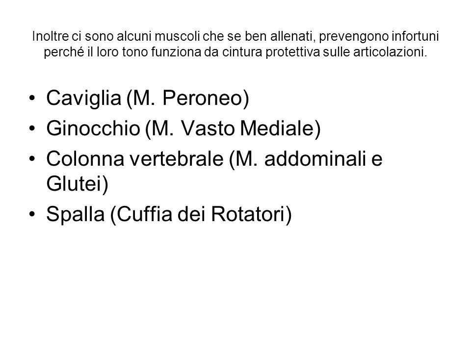 Ginocchio (M. Vasto Mediale)