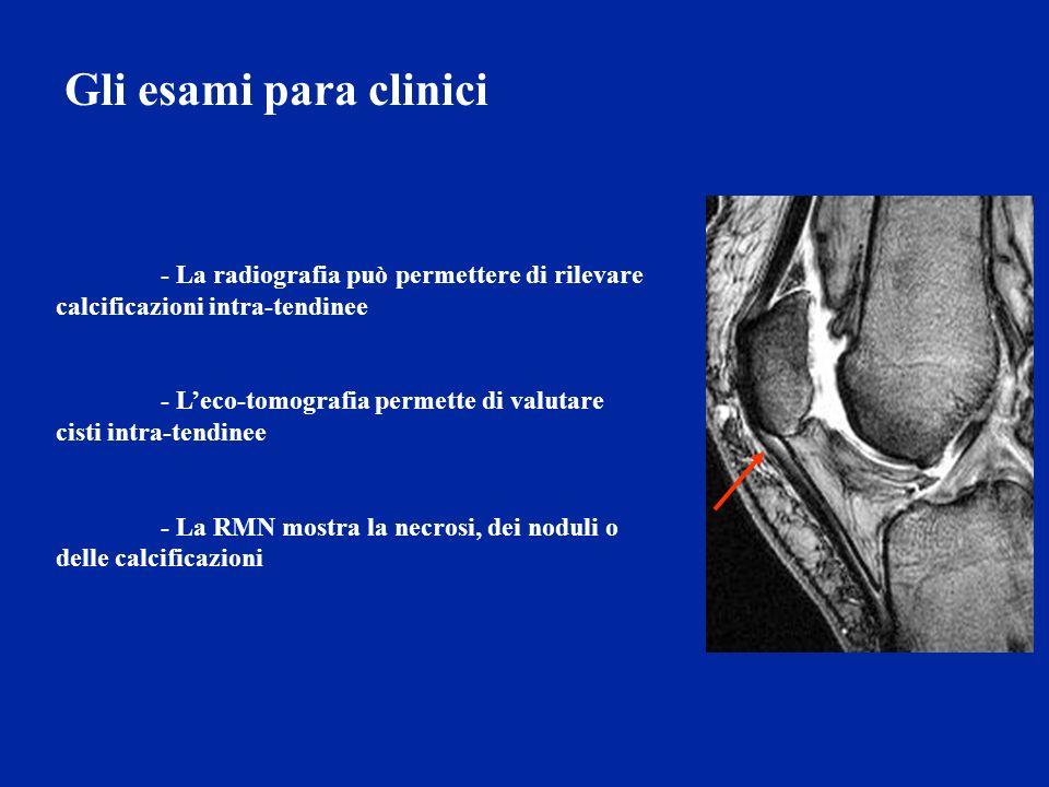 Gli esami para clinici - La radiografia può permettere di rilevare calcificazioni intra-tendinee.