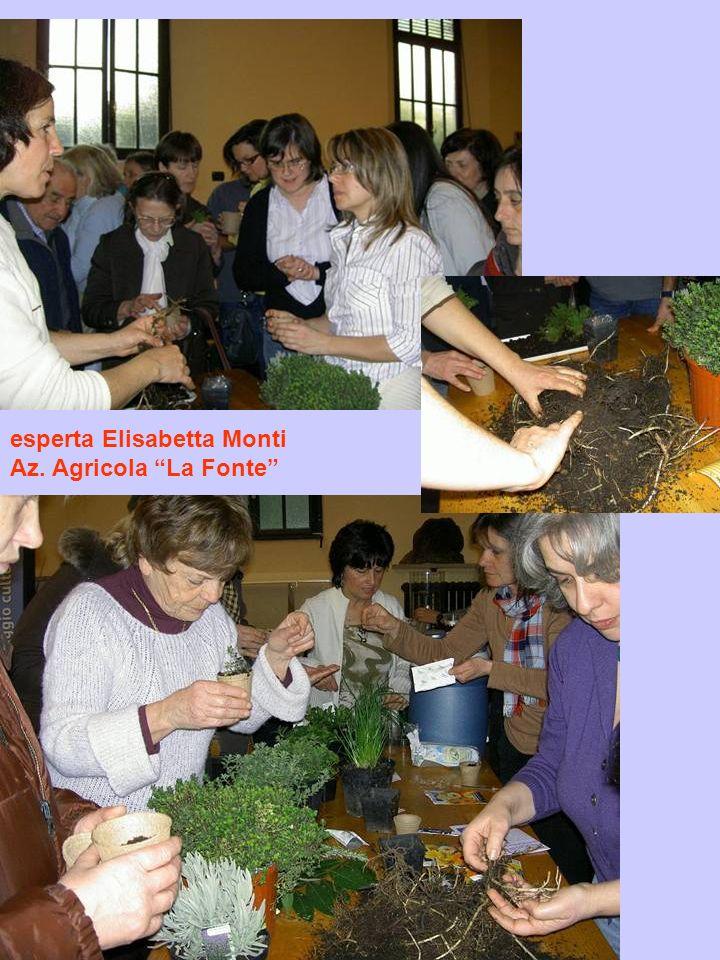 esperta Elisabetta Monti