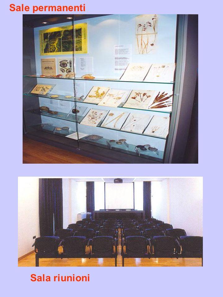 Sale permanenti Sala riunioni