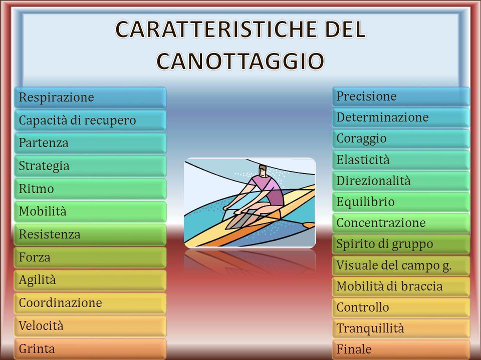 Caratteristiche del canottaggio