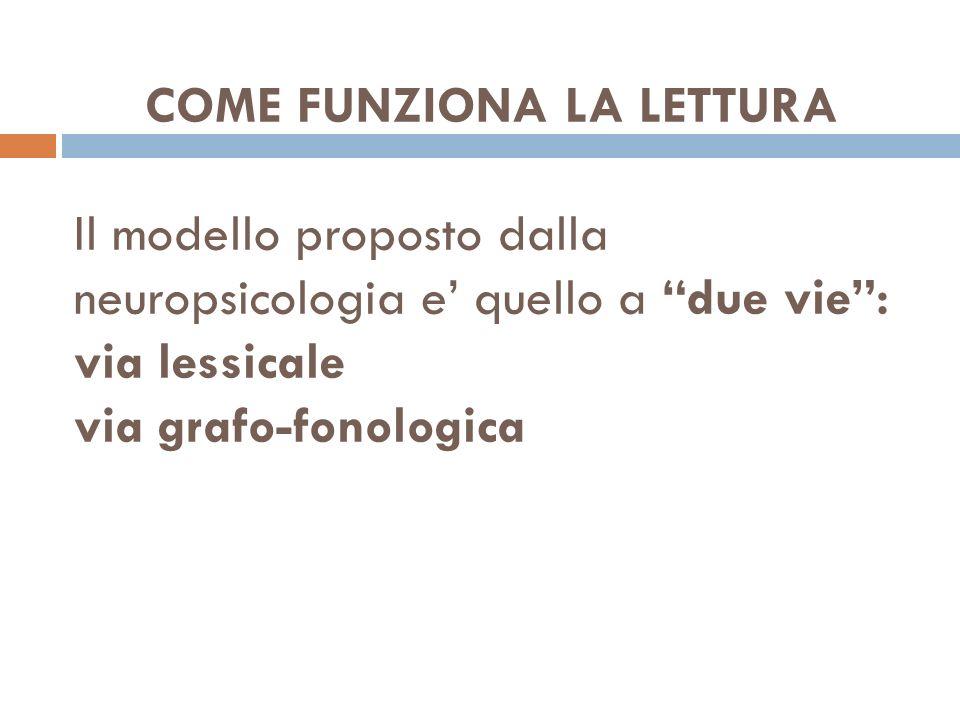 COME FUNZIONA LA LETTURA Il modello proposto dalla neuropsicologia e' quello a due vie : via lessicale via grafo-fonologica