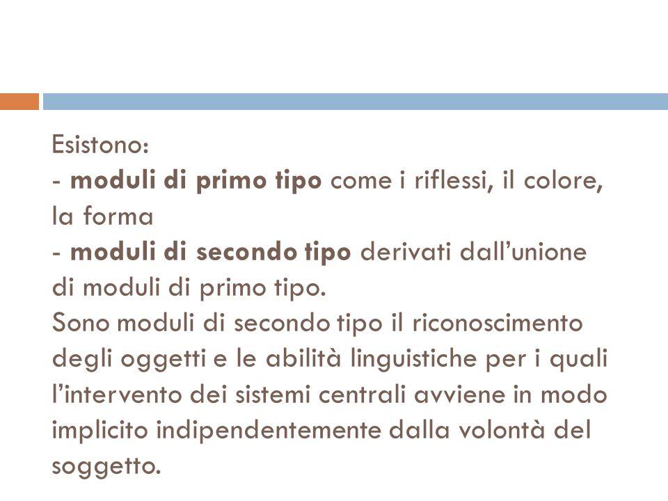 Esistono: - moduli di primo tipo come i riflessi, il colore, la forma - moduli di secondo tipo derivati dall'unione di moduli di primo tipo.