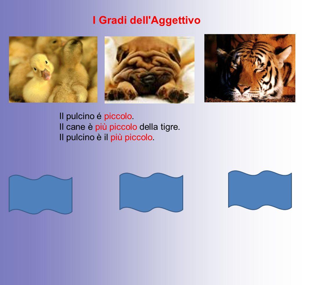 I Gradi dell Aggettivo Superlativo Positivo Il pulcino é piccolo.
