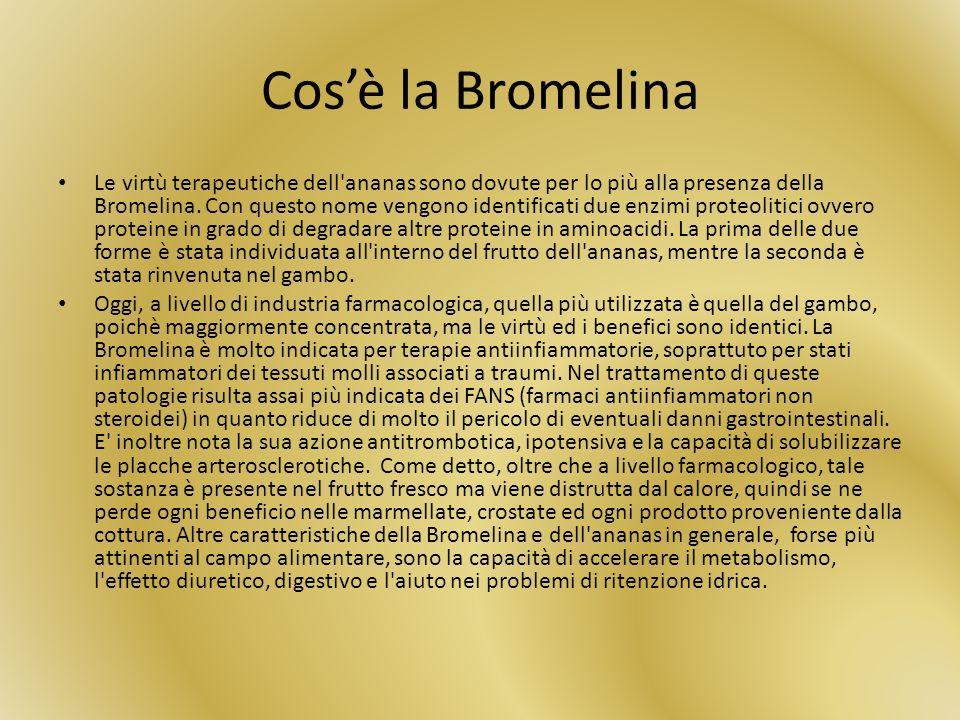 Cos'è la Bromelina