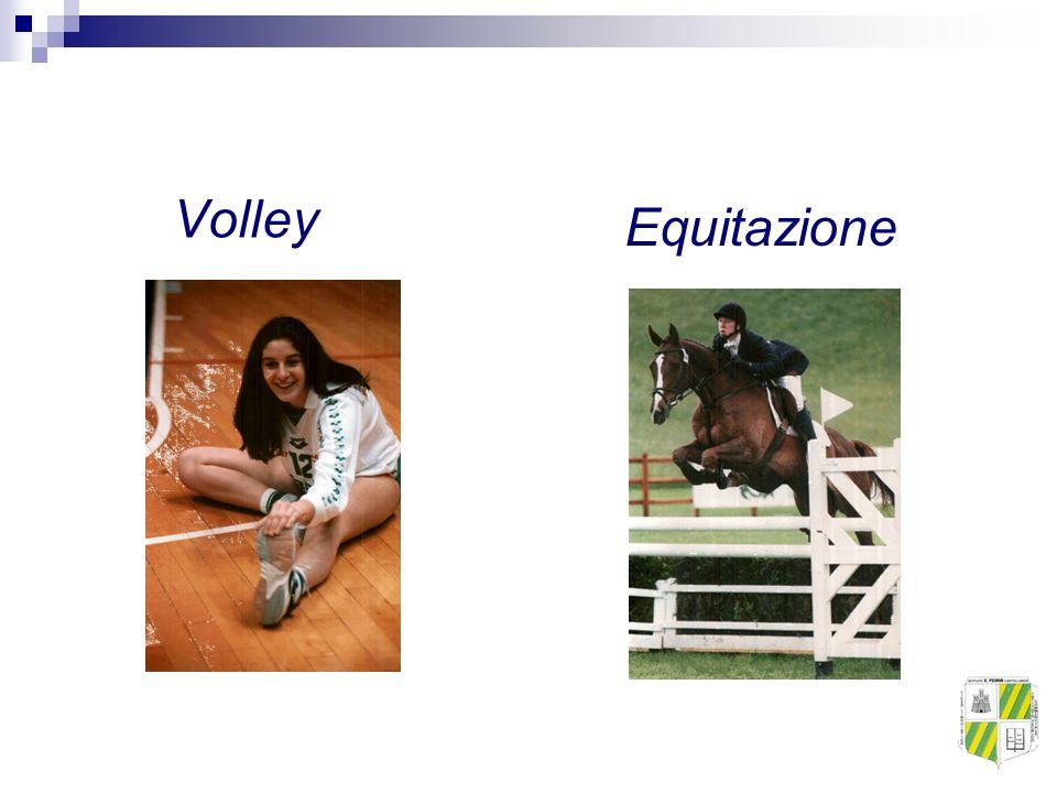Volley Equitazione