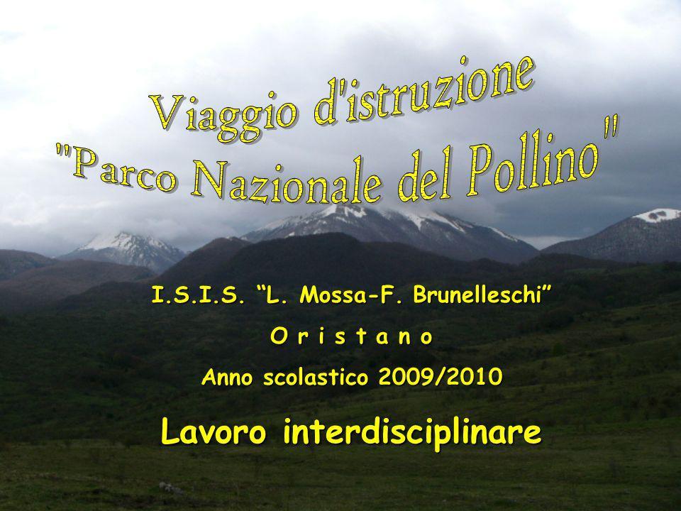 I.S.I.S. L. Mossa-F. Brunelleschi Lavoro interdisciplinare