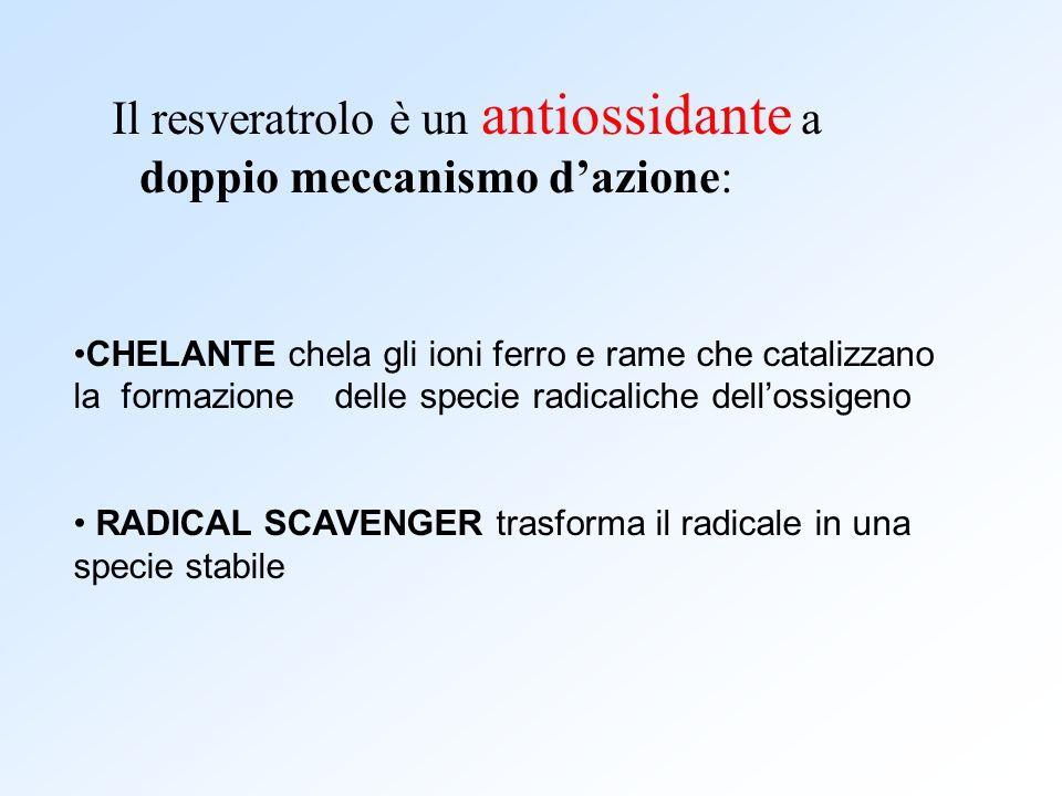 Il resveratrolo è un antiossidante a doppio meccanismo d'azione: