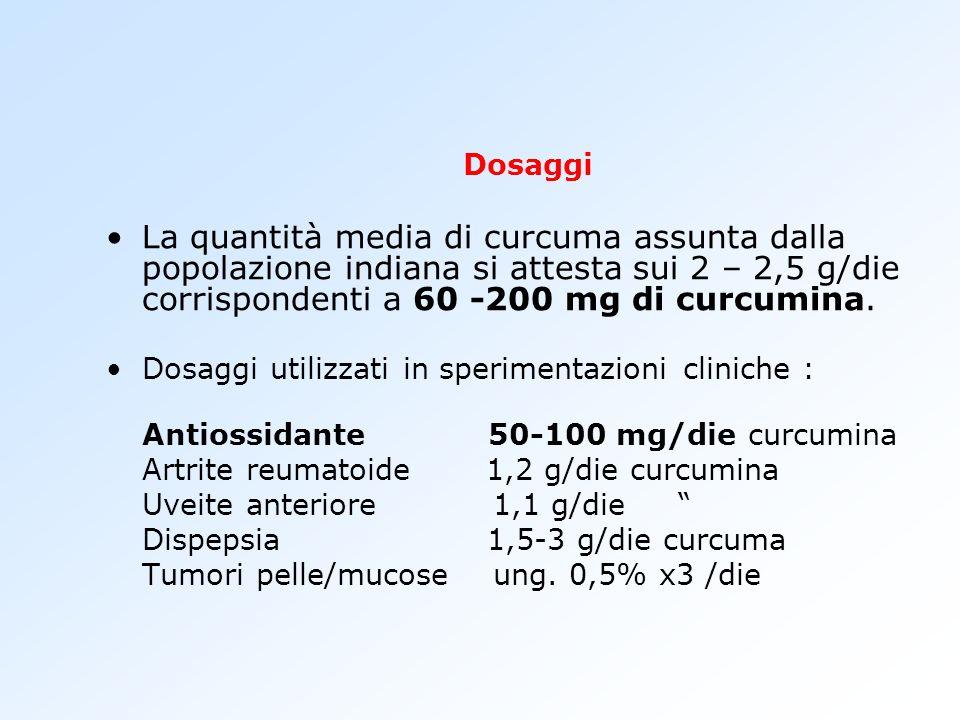 Dosaggi La quantità media di curcuma assunta dalla popolazione indiana si attesta sui 2 – 2,5 g/die corrispondenti a 60 -200 mg di curcumina.