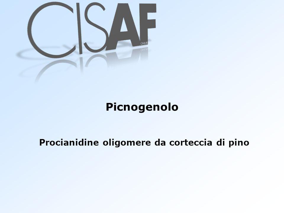 Procianidine oligomere da corteccia di pino