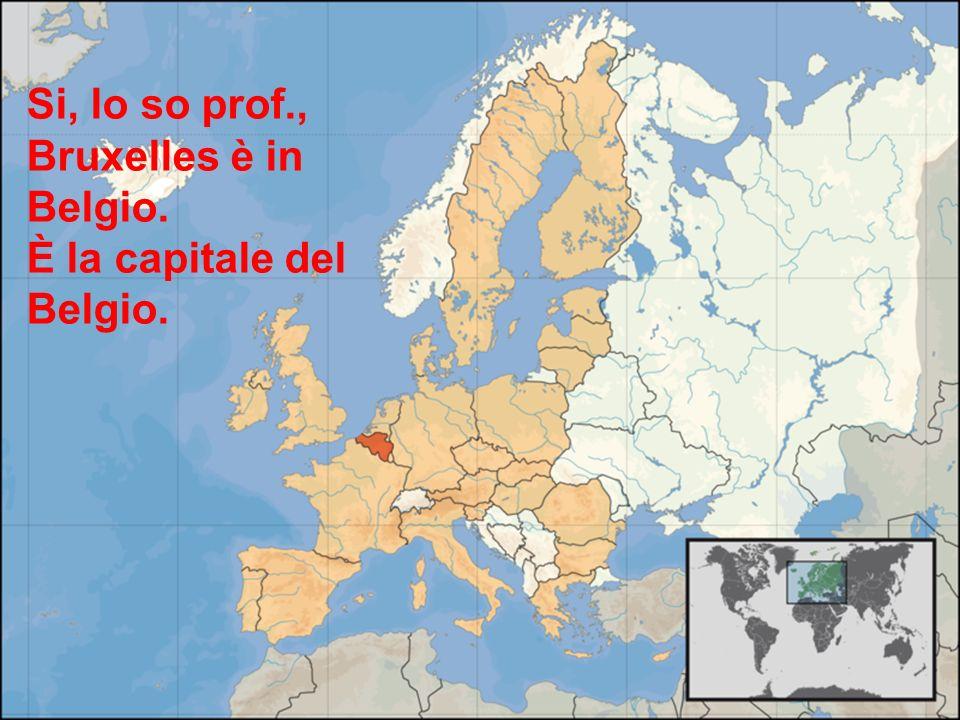 Si, lo so prof., Bruxelles è in Belgio. È la capitale del Belgio.